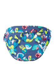 Coral Reef Fold Brief - Multi