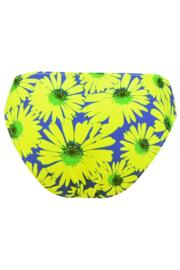 Crazy Daisy Brief - Blue/Yellow